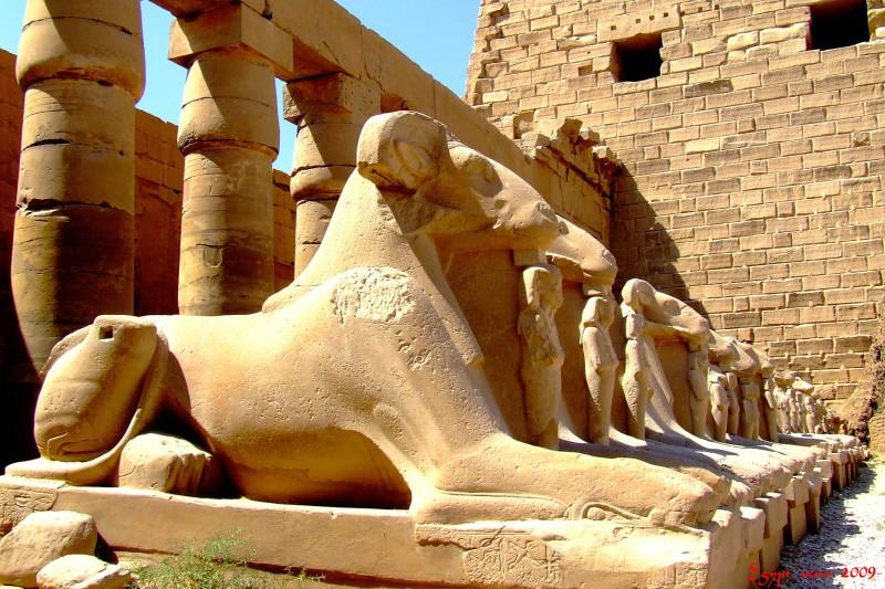 Egypt 004 Luxor-Karnak (35)